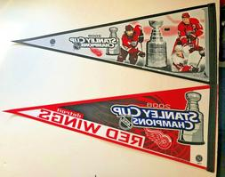 DETROIT RED WINGS 2008 NHL HOCKEY STANLEY CUP CHAMPS VINTAGE