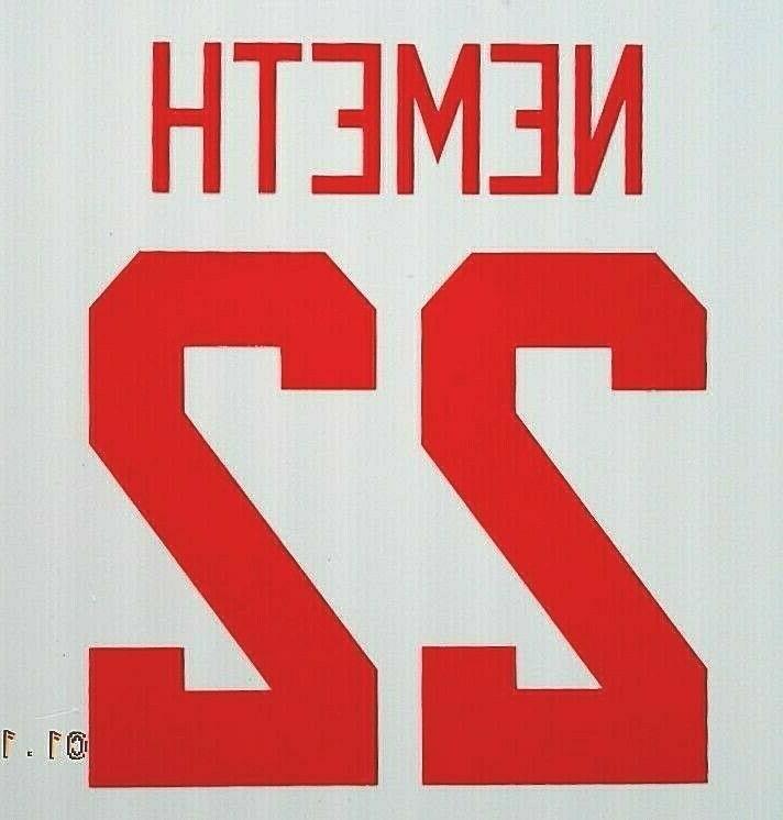 Detroit Red Wings STICKER DECAL Larkin Nemeth