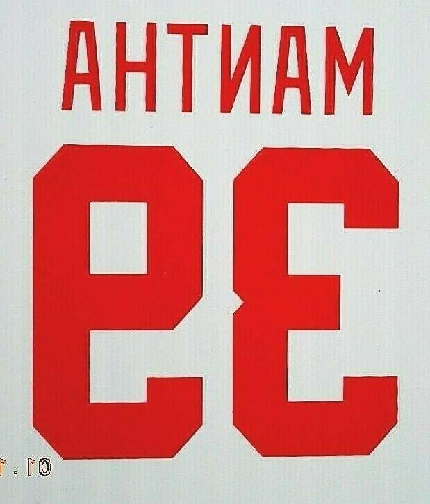 Detroit Red STICKER DECAL Bertuzzi Ryan