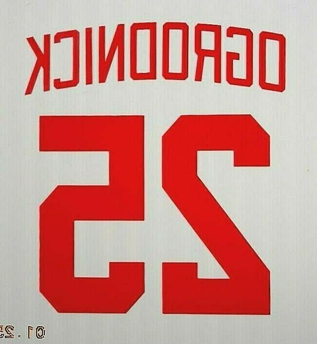 Detroit Red Wings DECAL Shanahan Larson Probert