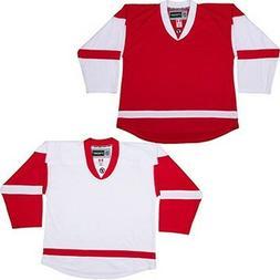 Team Lot/Set of 10 DETROIT RED WINGS  Hockey Jerseys BLANK o